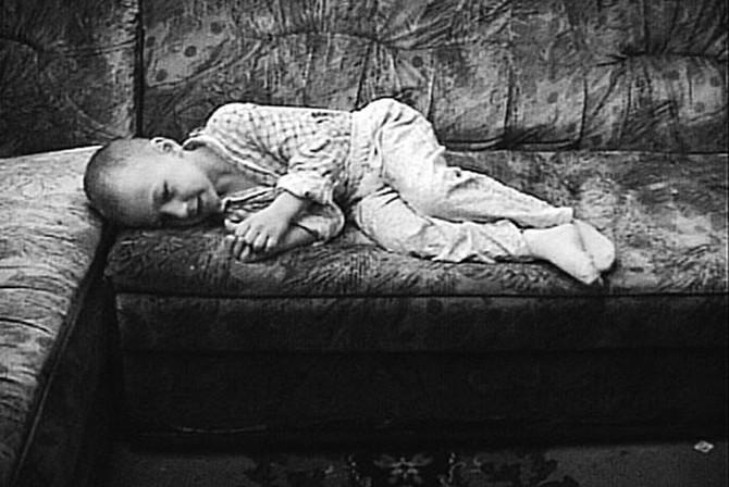 Ivan je odveden od čopora kada je imao šest godina