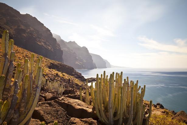 Teneryfa – dla poszukiwaczy malowniczych krajobrazów Największa i najludniejsza wyspa w archipelagu Wysp Kanaryjskich, co wcale nie oznacza, że jest tam bardzo tłoczno. Choć jej powierzchnia tylko nieznacznie przekracza 2 tys. kilometrów kwadratowych, można na niej wyróżnić kilka stref klimatycznych. Północ skąpana jest w zieleni i słynie ze wspaniałych, tropikalnych ogrodów, a południe suche i zawsze skąpane w słońcu. Do tego oczywiście należy dołożyć wulkaniczną, środkową część, pośród której góruje wulkan Teide. Najbardziej turystyczną częścią jest południe wyspy. Znajdują się tutaj najlepsze kurorty, które przyciągają miłośników wygrzewania się na słońcu. Północ jest słabiej zaludniona, ale i tutaj znajdziecie historyczne miasteczka o imponującej architekturze w których można się zatrzymać. Warto, ponieważ ta część wyspy słynie z malowniczego, skalistego wybrzeża, pośród którego ukryte są liczne plaże o czerwonawym czy wręcz czarnym odcieniu piasku. Trudno o piękniejsze widoki, niż te, które znajdziecie tutaj – można je odkrywać pieszo lub rowerem, co ułatwiają liczne trasy spacerowe. – Główną atrakcją Teneryfy jest wspomniana Góra Teide, najwyższy szczyt w całej Hiszpanii. Ale warto zobaczyć także mniej znane zakątki, jak na przykład Piramidy w Güimarze, na wschodnim wybrzeżu. Z najwyższej piramidy, podczas letniego przesilenia można ujrzeć podwójny zachód słońca, które najpierw zachodzi za górskim szczytem, by po chwili wyjrzeć raz jeszcze i skryć się ponownie za kolejną górą – mówi Piotr Wilk z biura podróży Rainbow. Warto dodać, że wspomniane sześć konstrukcji do dziś stanowi zagadkę dla archeologów, którzy próbują wyjaśnić łudzące podobieństwo kanaryjskich piramid do tych odnalezionych w Ameryce Środkowej, budowanych przez Majów czy Azteków. Źródło: r.pl/wyspy-kanaryjskie >>