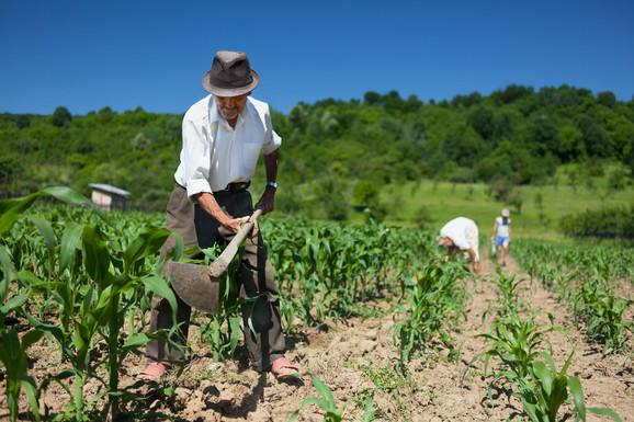 Penzioneri dodatnim radom mogu i da povećaju sebi osnovicu za penziju
