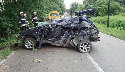 Uderzył w drzewo i wypadł z samochodu. Zdjęcia