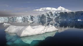 Polscy turyści szukają nowych wrażeń. Ile kosztuje wycieczka na Antarktydę?