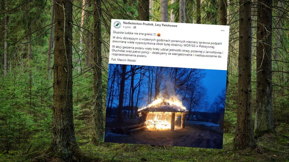 Podpalono wiatę turystyczną w Nadleśnictwie Prudnik