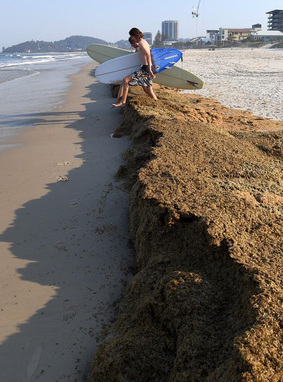 Ugroženo je oko 50 odsto obale Australije