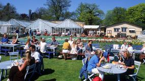 Siedmiu wspaniałych - wielkie kulinarne wydarzenie w ogrodach Rosendal w Sztokholmie