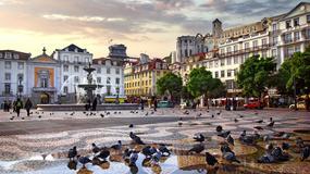 Ekologiczny hotel w centrum stolicy Portugalii