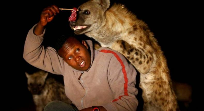 Hyenas are also being hunted down for their skins and body parts for use in traditional medicine.