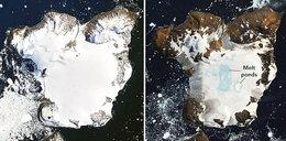 Antarktyda utraciła w kilka dni 20% pokrywy śnieżnej. Zdjęcia szokują