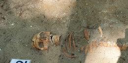Niezwykłe odkrycie na Westerplatte!