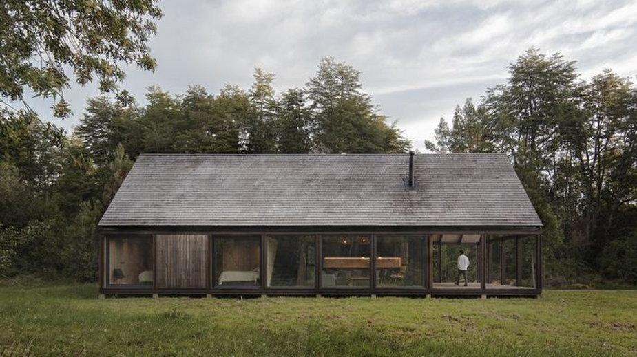 Przeszklony dom w środku lasu. Wygląda jak drewniana szopa.