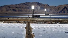 Największa słoneczna elektrownia świata zabiła dziesiątki tysięcy ptaków
