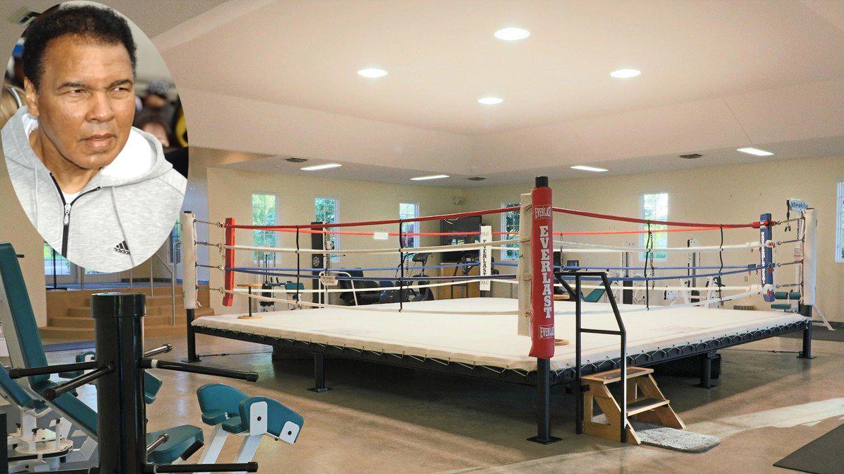 zsírégető bokszolók)