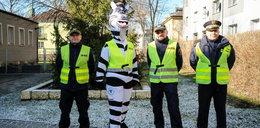 Maskotka zebry uczy dzieciaki przechodzenia przez pasy
