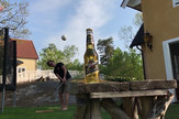 AP_Otvaranje_pivske_flase_vesti_blic_safe