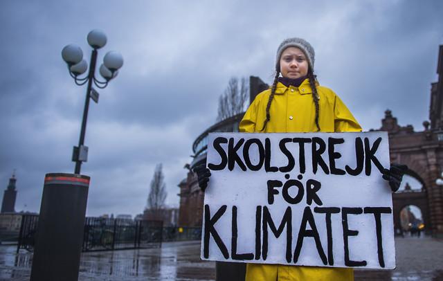 Švedska aktivistkinja Greta Tunberg na klimatskom protestu u Stokholmu u novembru 2018.