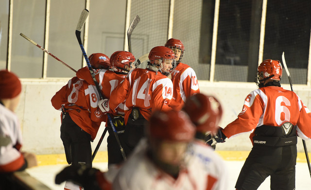 Mlade nade srpskog hokeja