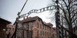 Turyści z Izraela oburzeni pomysłem muzeum Auschwitz: To jak cios w brzuch