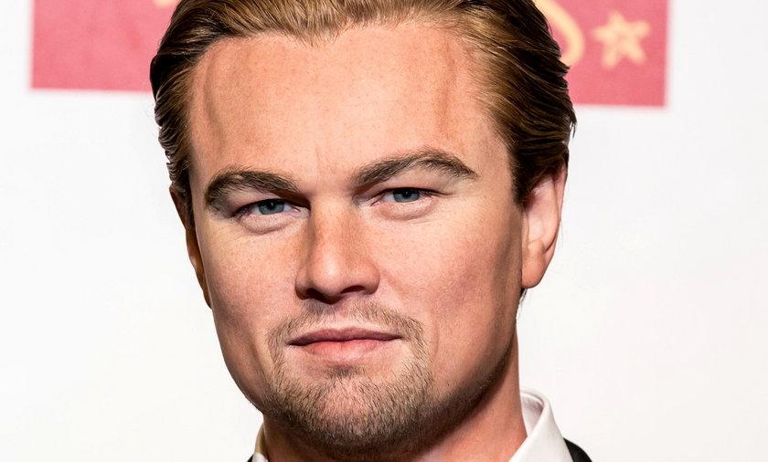 Leonardo Dicaprio z wosku
