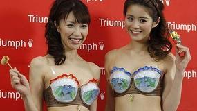 Biustonosz polepszy sytuację energetyczną Japonii?