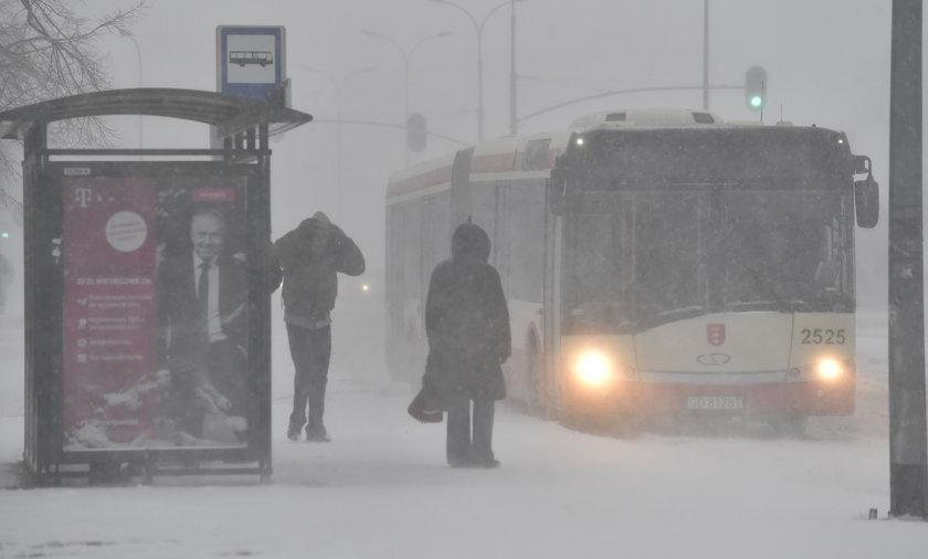 Do Polski wróci zima! Szybciej niż ci się wydaje