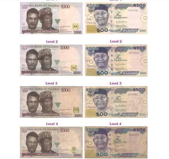 Teller fit banknotes (CBN specimen)