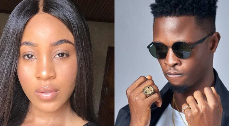 BBNaija 2020: Erica in fresh online drama over Laycon's genotype revelation