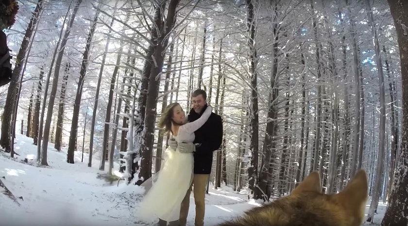 Wzruszający film ze ślubu. Nagrał go pies