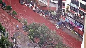 Ulice stolicy Bangladeszu spłynęły krwią
