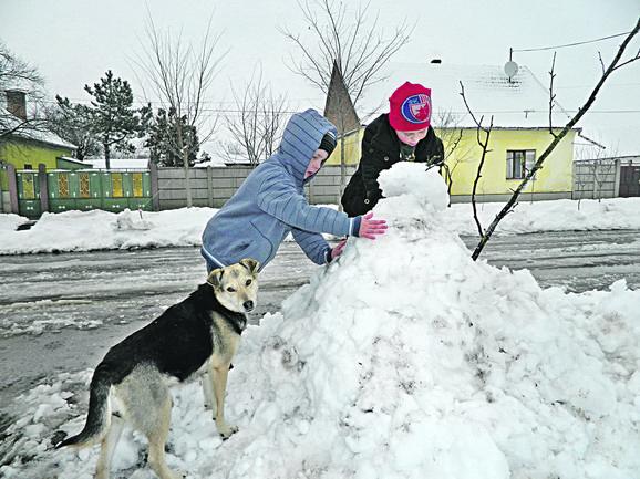 Čongor i Robert vole da se igraju u društvu ledi, koja je njihov verni pratilac