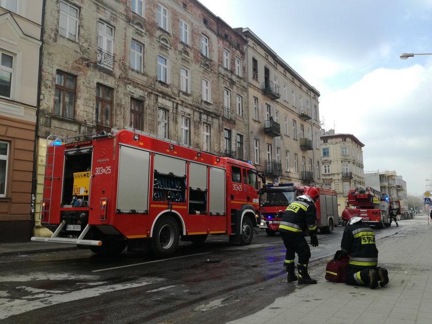 Pożar przy Struga. Dwie osoby wyszły z poparzeniami, nie udało się uratować papugiPożar przy Struga. Dwie osoby wyszły z poparzeniami, nie udało się uratować papugi
