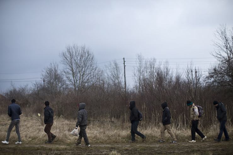 580376_migrants-are-seen-walking-down-a-path-on-the-outskirts-of-subotica-ap