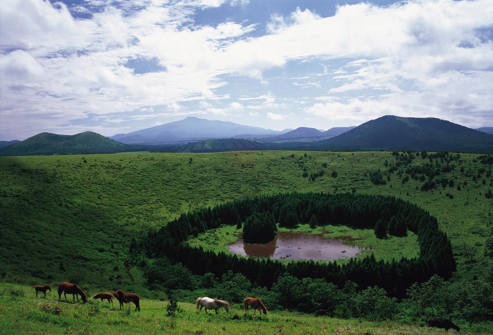 """Jezioro wulkaniczne na szczycie Halla-san nazywa się Pängnok-tam, co oznacza """"miejsce, gdzie chodzi pić biały jeleń"""". Według jednej z legend z nieba na Halla-san zstępowały dusze, które jeździły na białych jeleniach wokół jeziora"""
