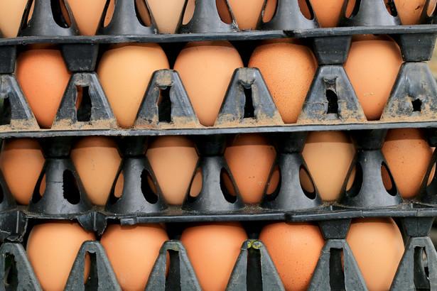 Problemy z podażą jaj są także następstwem grypy ptaków we Włoszech, które są jednym z czołowych producentów jaj w Europie