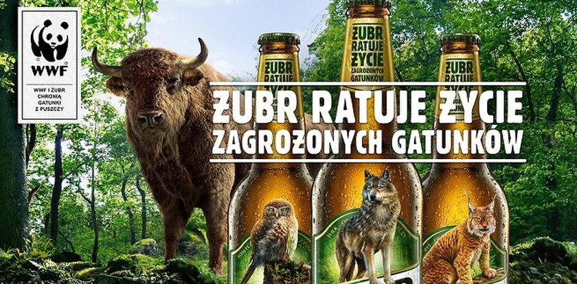 Wizerunek Żubra znika z etykiet piwa. To element ważnej akcji
