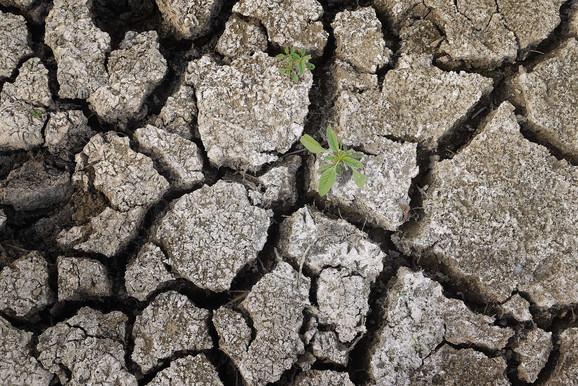 Uslovi na Zemlji će uskoro postati nemogući za život