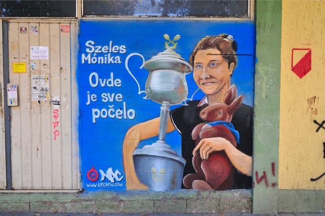 Grafit posvećen Moniki Seleš