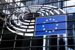 Eurowybory 2019: Anna Zalewska w Parlamencie Europejskim