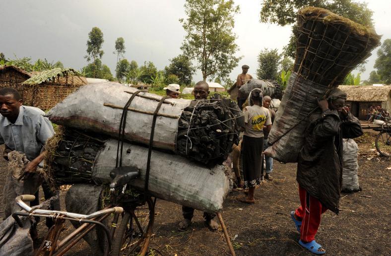 Charcoal dealers in Democratic Republic of the Congo's North Kivu province
