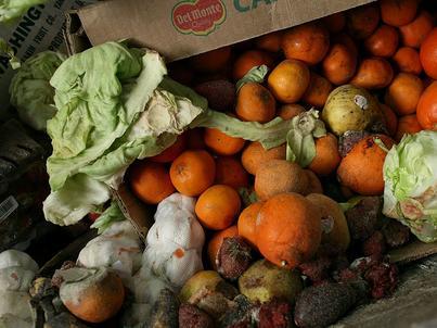 Marnowanie jedzenia to problem nie tylko społeczny, ale i ekologiczny. Powoduje bowiem marnotrawstwo wody zużytej do produkcji żywności