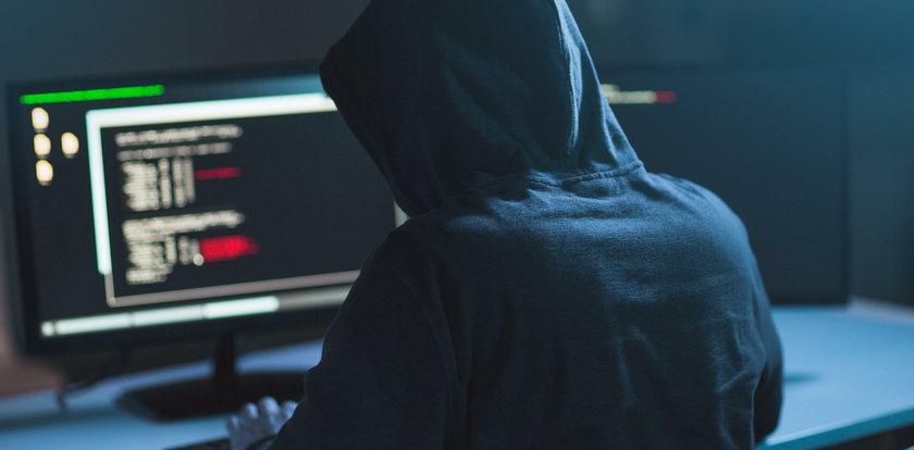 Kulisy śledztwa ws. farmy trolli. Stanowcza odpowiedź
