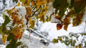 Atak zimy w austriackim Tyrolu; zablokowane drogi i kolej, brak prądu