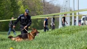 Policyjne psy nową bronią przeciwko pedofilom