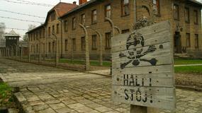 8 mln zł przeznaczy Fundacja Auschwitz w br. na konserwacje w Muzeum
