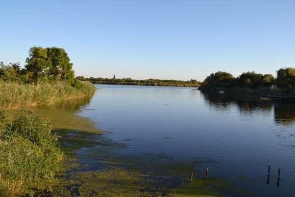 Ušće Krivaje u Veliki bački kanal