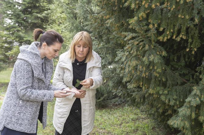 U Agenciji za zaštitu životne sredine radi i Grupa za monitoring i stanje alergenog polena