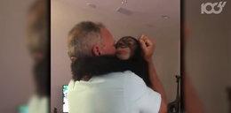 Uratowali małego szympansa. Jego wdzięczność jest wzruszająca