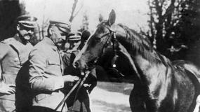 Poczet sławnych koni