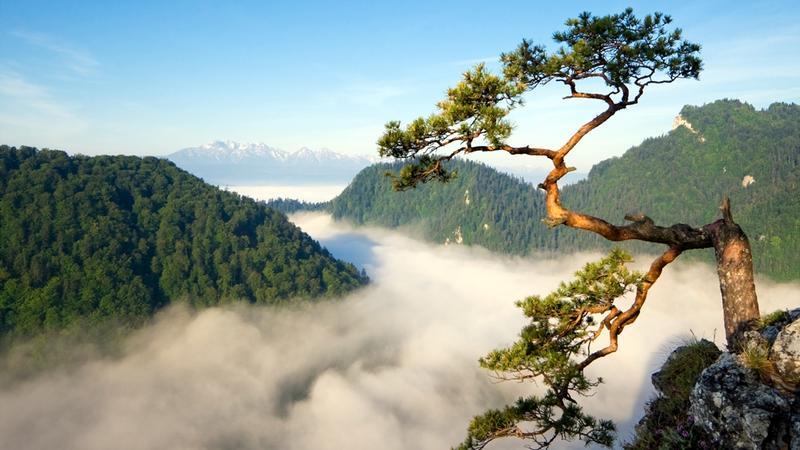 Najpiękniejsze szlaki - Sokolica