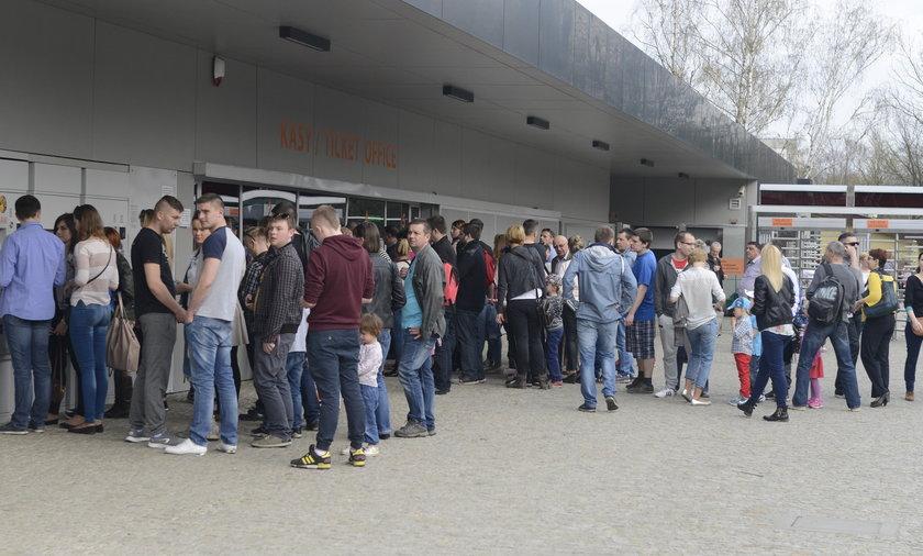 Tłumy we wrocławskim zoo