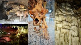Jaskinia Niedźwiedzia w Sudetach - arcydzieło natury