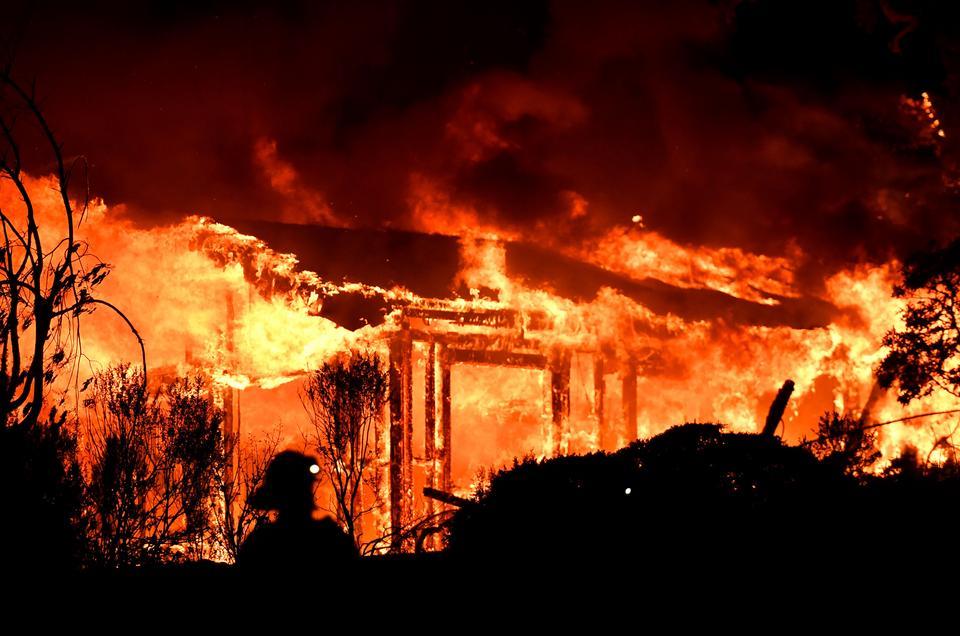 Pożar w rejonie Napa w Kalifornii